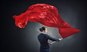 Red Flags in an FDD